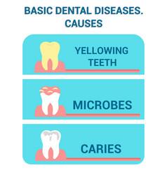 Basic dental diseases sickness info poster vector