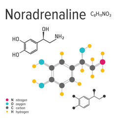 chemical formula of a noradrenaline vector image