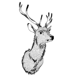 Christmas deer hand drawn vector