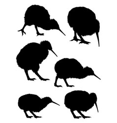 kiwi birds animal silhouette vector image