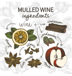 sketch drawing set mulled wine ingredients vector image