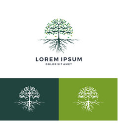 Tree and root logo leaf vector
