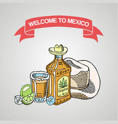 Welcome to mexico tequila bar banner poster vector