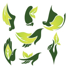 healthcare beauty and nature vector image
