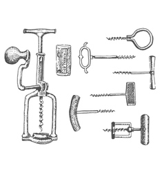Big set of corkscrew in vintage old engraving vector