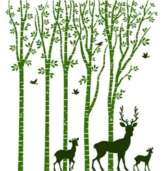 Birch Tree with Deer vector
