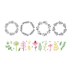floral decorational frame with botanical doodle vector image