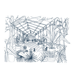 Freehand sketch of interior of tropical botanical vector
