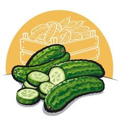 fresh cucumbers vector image vector image