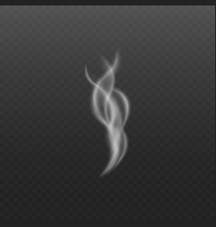 steam or smoke realistic swirled element on vector image