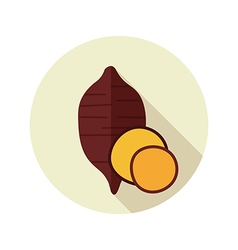 Sweet potato flat icon Batata Vegetable vector