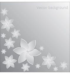 White paper flowers background vector image