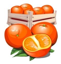 Box of fresh ripe orange with leaves vector image