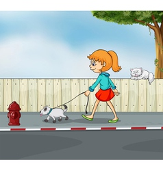 A girl strolling with her pet vector image vector image