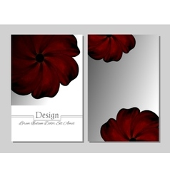 Beauty brochure Red flower vector image vector image