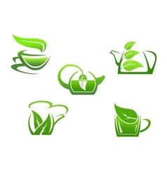 Green herbal tea cups vector image vector image
