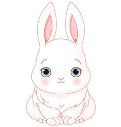 White bunny vector