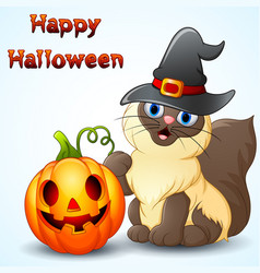 Cat cartoon with a witch hat and pumpkin vector
