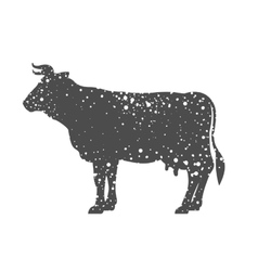 Isolated cow animal design vector