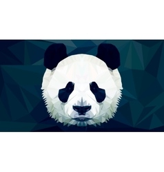 Panda head polygon isolated vector