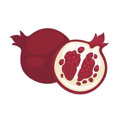 Pomegranate fruit isolated flat icon whole vector