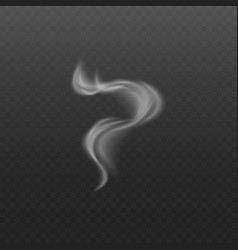 smoke or steam wave from cigarette and hot food vector image
