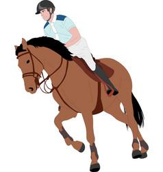 young horseman riding elegant horse color vector image