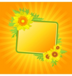 banner with sunflowers vector image