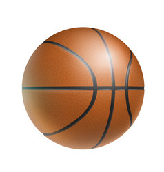 brown basketball ball realistic isolated vector image