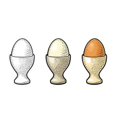 egg standing in egg cup vintage color engraving vector image