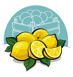 Fresh lemons vector