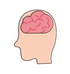 human brain inside head sideview icon image vector image