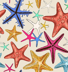 Seamless pattern of starfish vector