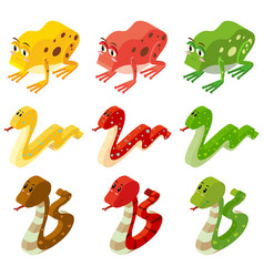 snakes and frogs in three colors vector image