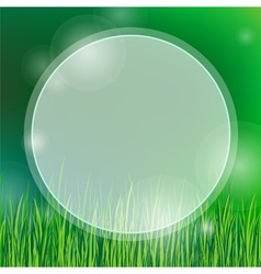 summer background with green grass vector image