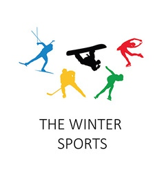 The winter sports silhouettes vector image