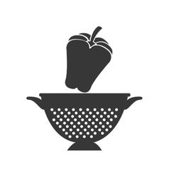 Vegetable and kitchen colander vector