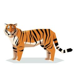 flat geometric tiger vector image