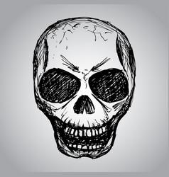skull hand drawing vector image