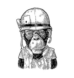 monkey in soldier helmet with glasses vintage vector image vector image