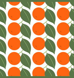 seamless pattern with tangerines on white vector image