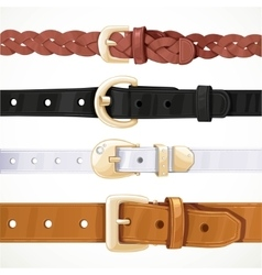 Set multicolored buttoned to buckle belts vector