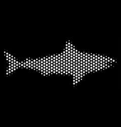 white dot shark icon vector image