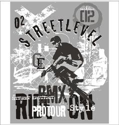street level biker 3 vector image