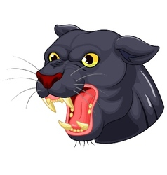 Black panther head mascot vector image