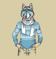 husky in human sweatshirt vector image