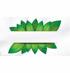 abstract realistic green leaves with white banner vector image