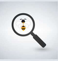 bee under magnifier zoom lense flat design vector image
