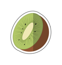 Cartoon kiwi tropical fruit icon vector