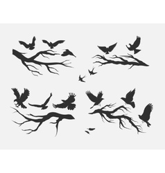 Flying birds mounted on branches vector